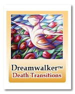 dreamwalker-death-transitions-schools-s